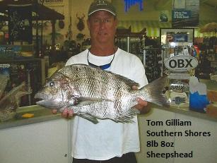 Tom Gilliam