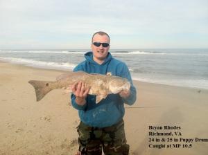 Bryan Rhodes