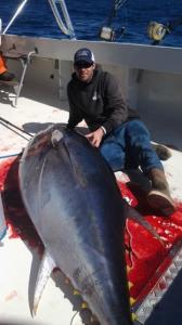Bluefin 1