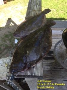 Flounder 7.17.15