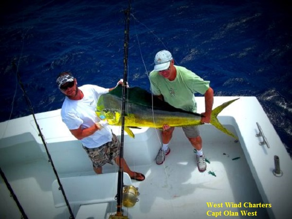 West wind charters tw 39 s bait and tackle for Tw s fishing report