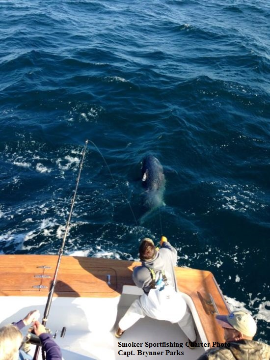 Smoker sportfishing charters tw 39 s bait and tackle for Tw s fishing report