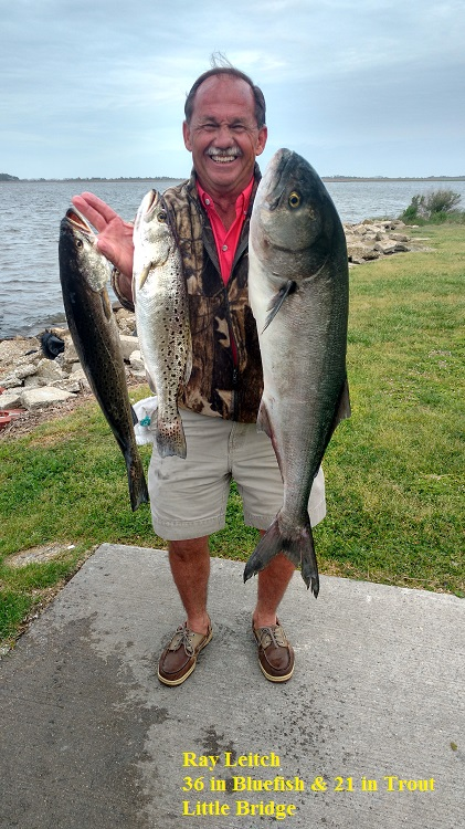 Ray leitch tw 39 s bait and tackle for Tw s fishing report