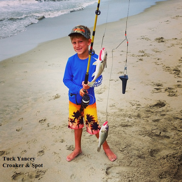 Tuck yancey tw 39 s bait and tackle for Tws bait and tackle fishing report