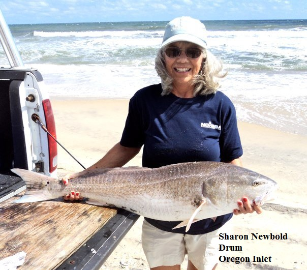 Sharon newbold tw 39 s bait and tackle for Tws bait and tackle fishing report