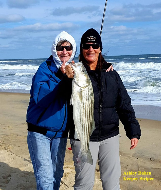tws bait and tackle friday 11 24 17 shorefishing
