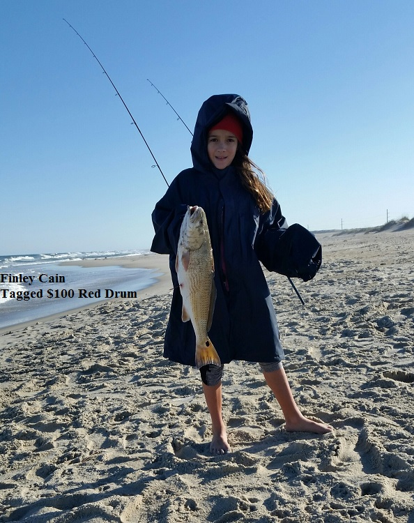 Tws bait and tackle tuesday 11 18 17 shorefishing for Tws bait and tackle fishing report