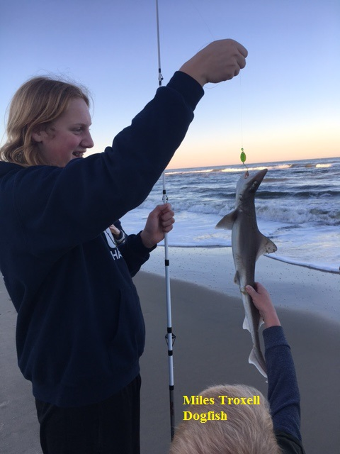 Outer banks fishing report wednesday 11 22 17 for Obx fishing reports