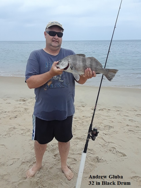 Tw 39 s bait and tackle email fishing info pictures to info for Tw s fishing report