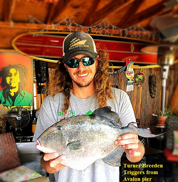 Fishing Reports - Everything Outer Banks