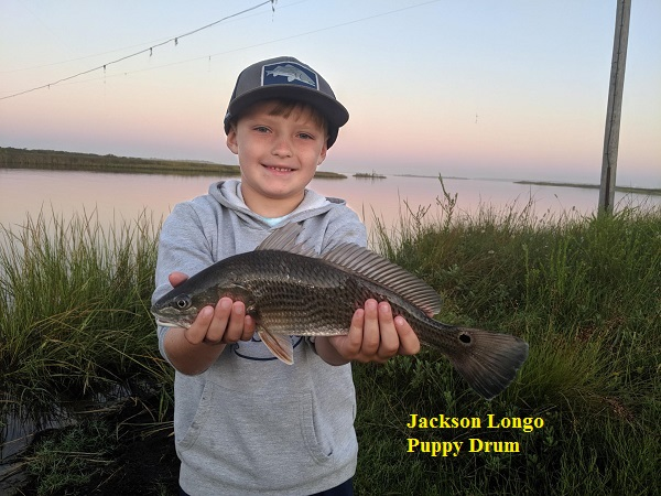 Fishing Reports | TW's Bait and Tackle